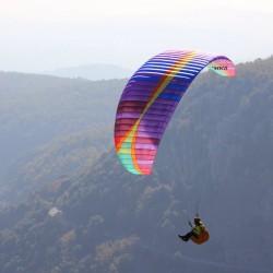 BGD Wasp Glider