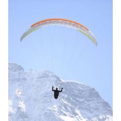 Advance Omikron Glider